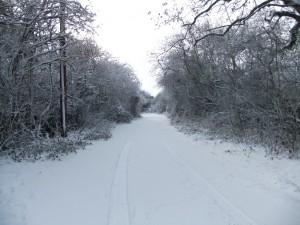 Snowy Stanbridge